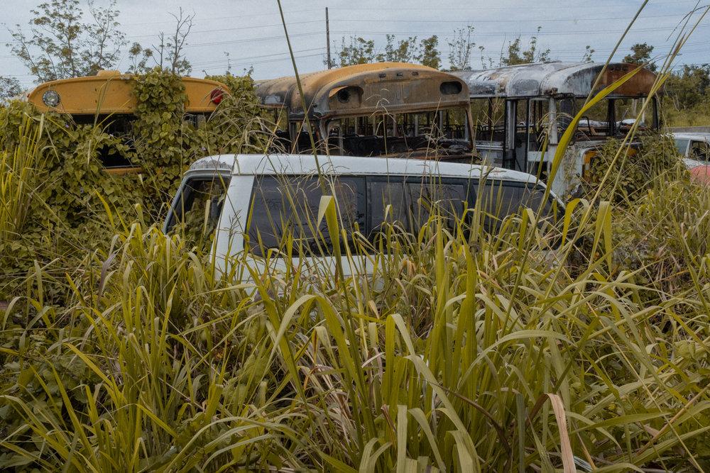 Abandoned vehicles near the clinic, Ceiba