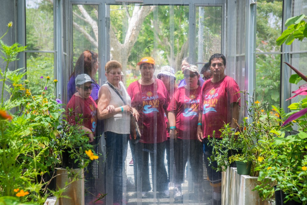 MAVI clients and their caretakers wait to enter the buttefly enclosure at Parque Luis Muñoz Marín.